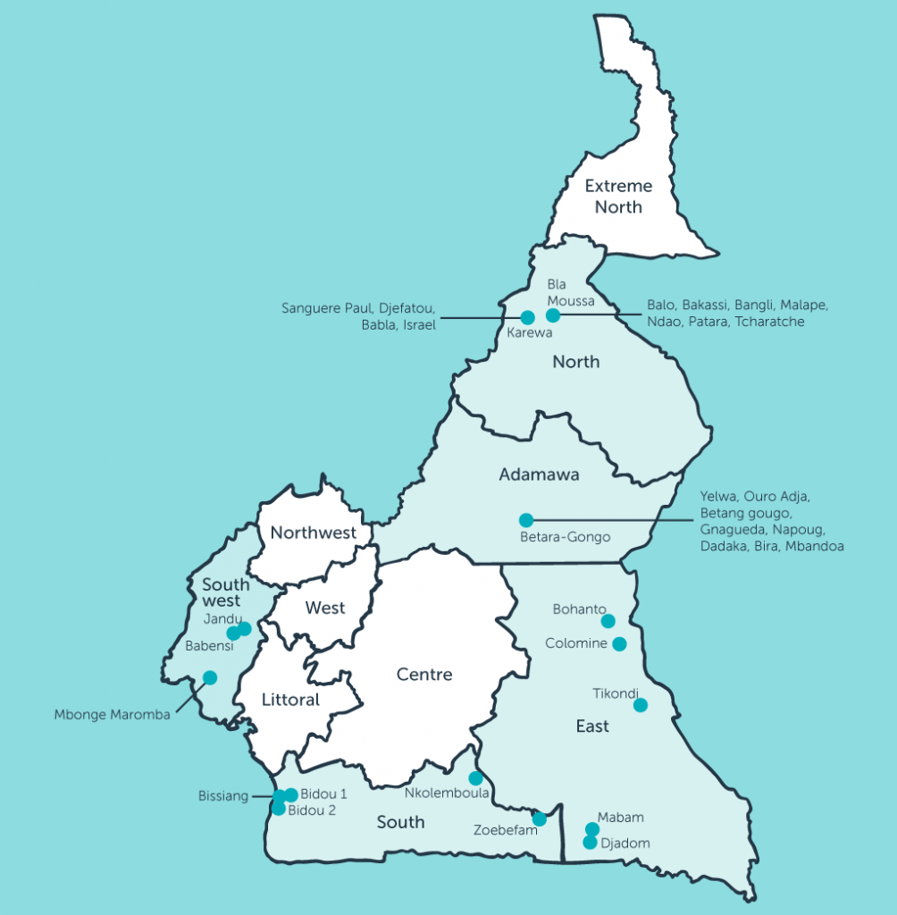 The project developed and tested the standard methodology for participatory community mapping in 25 communities and five regions in Cameroon with different ecosystems and cultures
