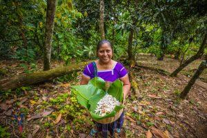tony rath photo of maya woman with cacao